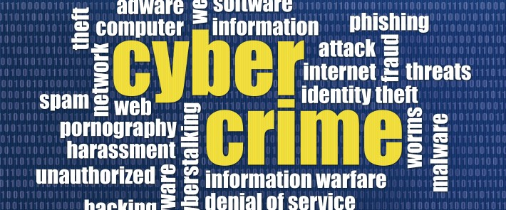 cyber~crime e~commerce